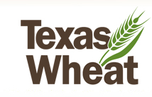 texas_wheat